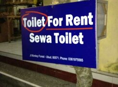 Toilet-for-rent